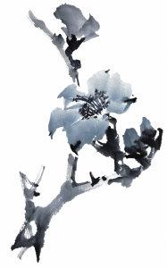 古典中国风高清背景