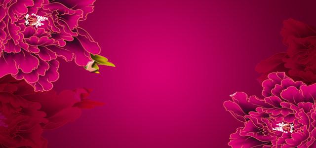 牡丹花纹 背景