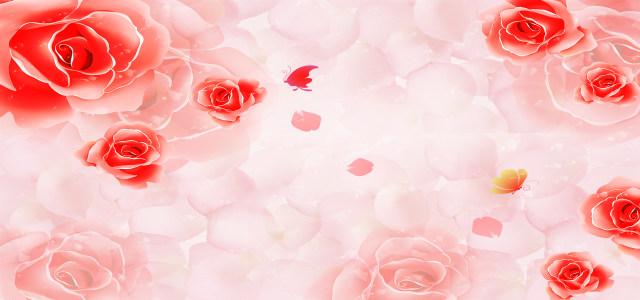 梦幻玫瑰背景