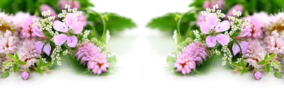 唯美花瓣淘宝海报背景