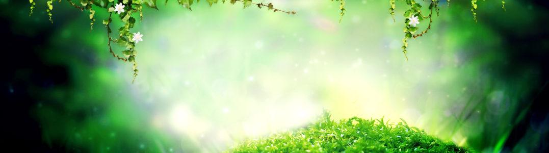 绿色梦幻banner背景