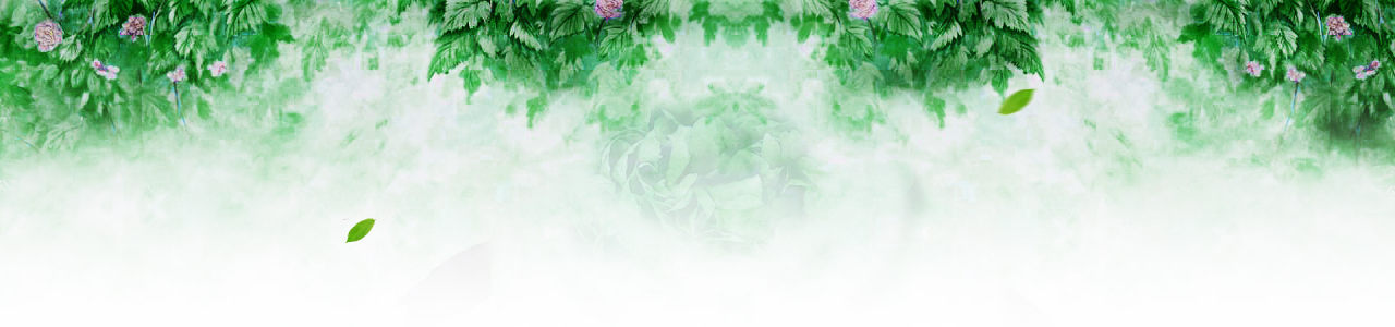 绿色清新背景墙高清背景图片素材下载