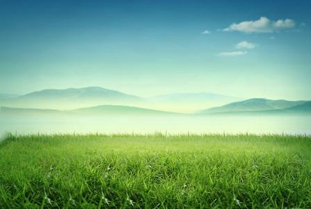 清新绿色草地背景高清背景图片素材下载