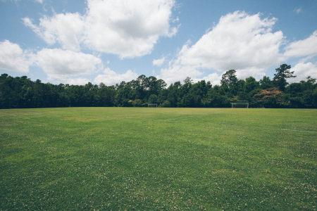 草地风景高清背景图片素材下载