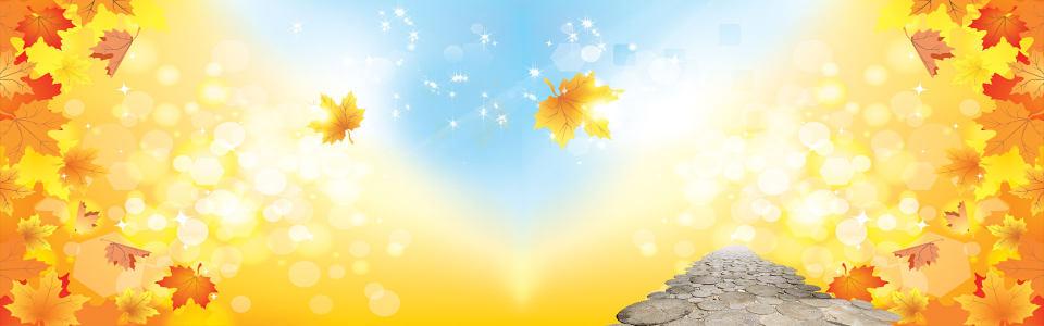 秋季秋装金色背景banner高清背景图片素材下载