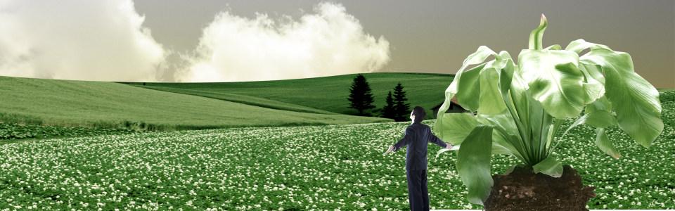 绿色环保广告背景高清背景图片素材下载