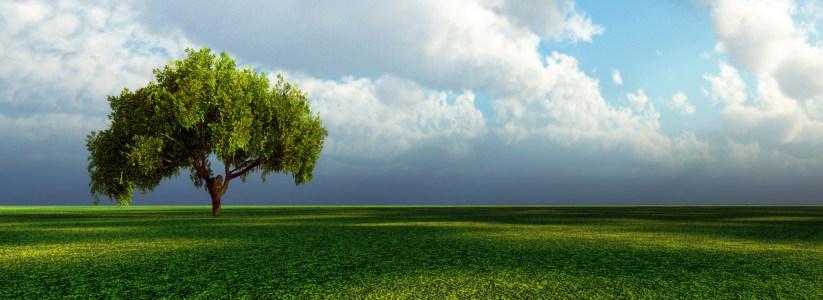 自然风景图