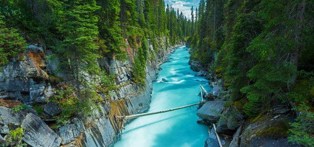 峡谷河流森林背景