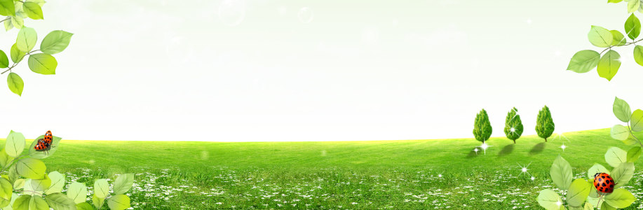 春天绿叶绿色