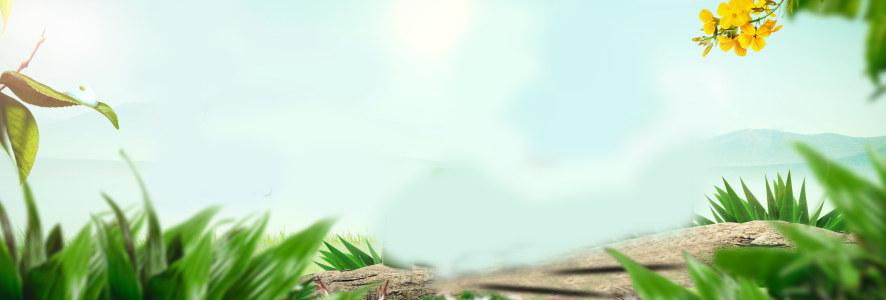春天banner背景