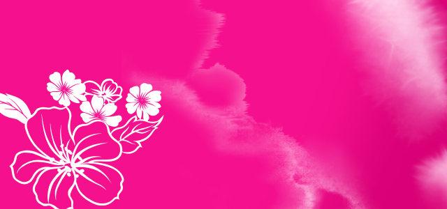 粉色花背景图