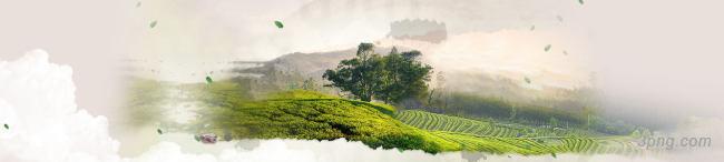 茶山背景背景高清大图-茶山背景Banner海报