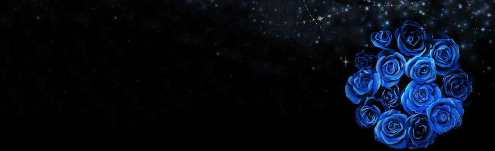 黑蓝色玫瑰唯美背景banner