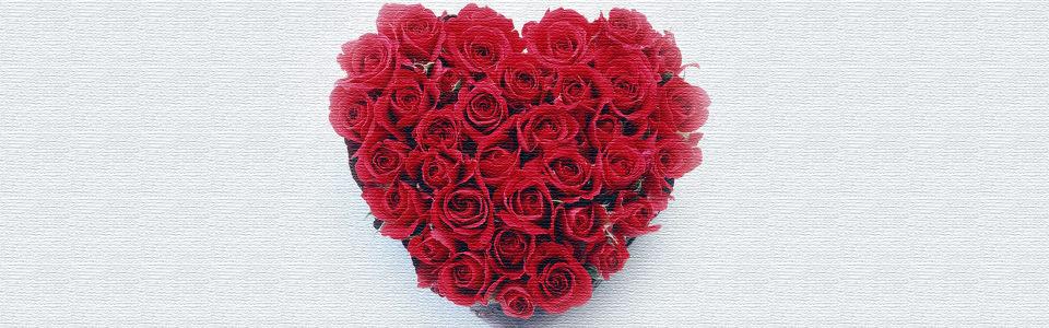 情人节心形玫瑰花海报背景高清背景图片素材下载