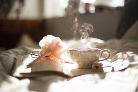 温馨的早晨