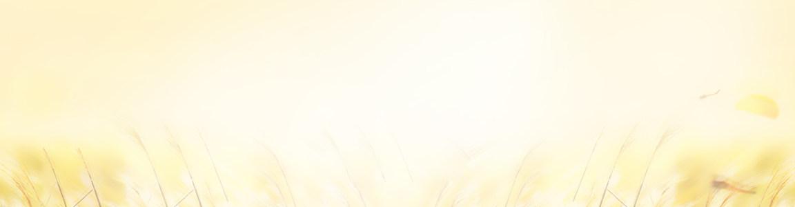 淘宝女装首页秋装海报促销banner高清背景图片素材下载