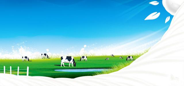 牛奶宣传广告