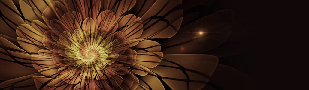 炫酷时尚花朵淘宝背景图