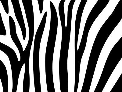 斑马的条纹背景