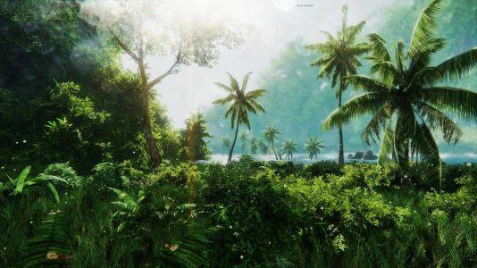 丛林背景高清背景图片素材下载