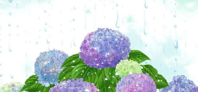 鲜花 花朵 植物 背景高清背景图片素材下载