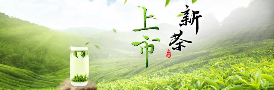新茶上市茶叶文化网站PSD分层