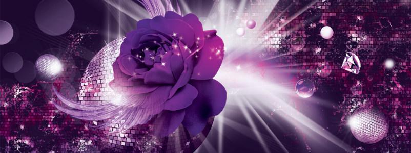 紫色炫酷玫瑰背景banner