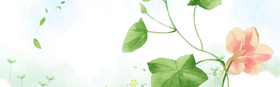小清新花朵背景海报