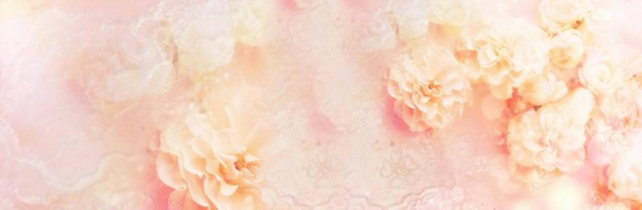 粉色花卉唯美背景banner