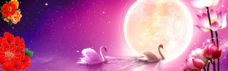 中秋月亮牡丹花背景