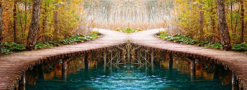 秋季树林河水背景banner