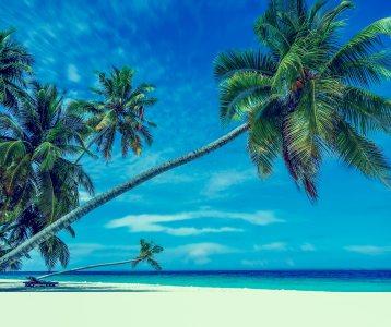 海滩风景背景