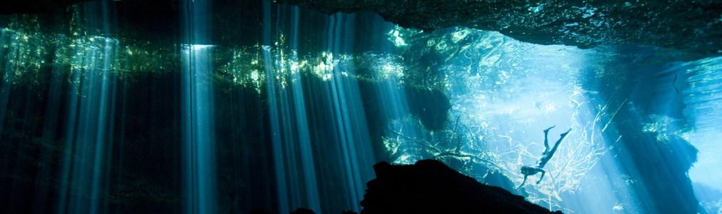 海底世界摄影banner壁纸