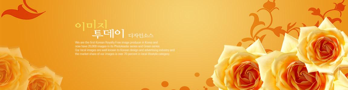 花朵 黄色 背景图