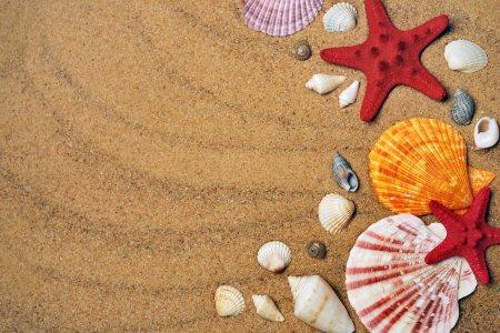 沙滩高清背景图片素材下载