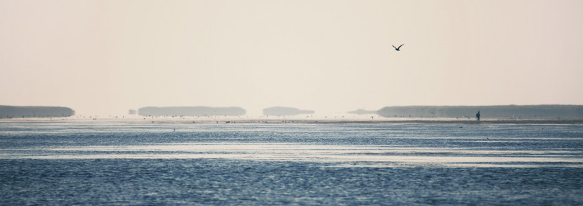 海边广告banner创意设计高清背景图片素材下载