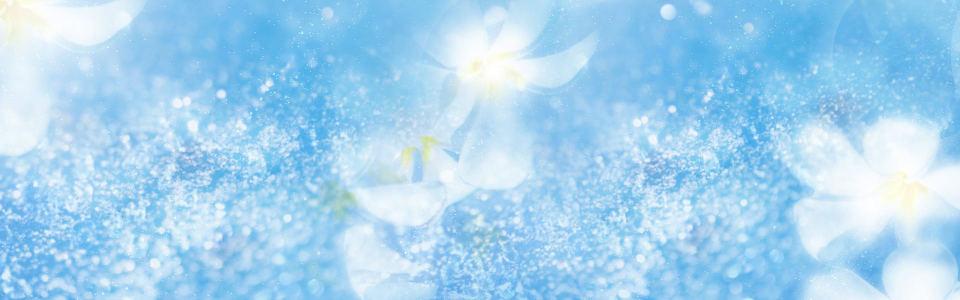 梦幻蓝色花朵背景