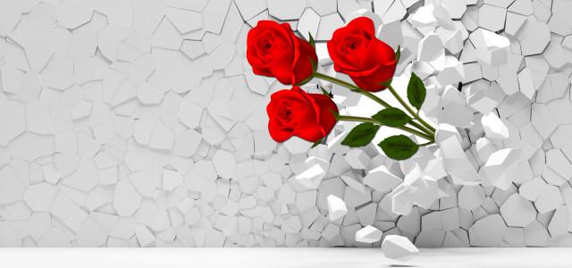 3D玫瑰花背景
