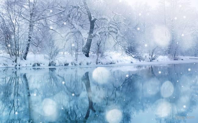 冬天雪花雪景背景背景高清大图-雪景背景鲜花