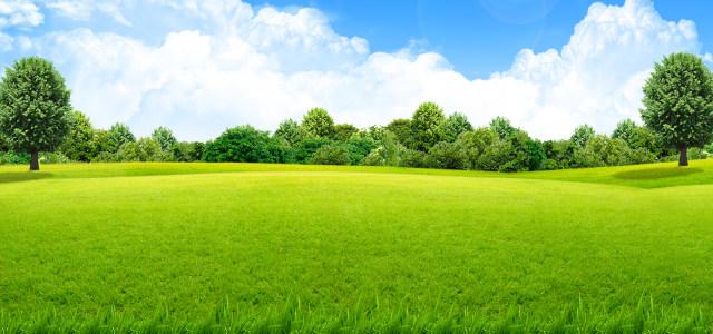 绿色背景高清背景图片素材下载
