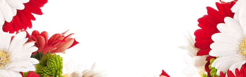 花卉淘宝海报背景