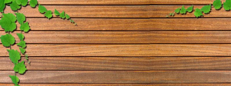 绿叶绿色藤蔓木板背景
