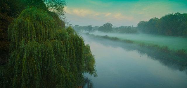 天空河流植物背景高清背景图片素材下载