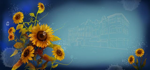 唯美太阳花背景高清背景图片素材下载