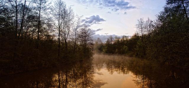 天空河流树林背景