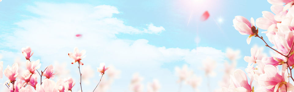 唯美春天风景背景