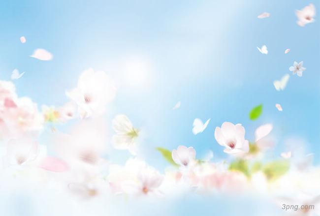 春天banner背景背景高清大图-春天背景底纹/肌理