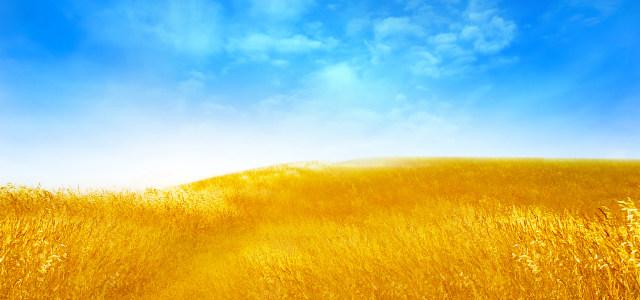 天空草原背景
