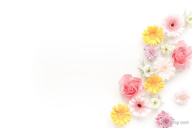 清新花朵俯拍背景背景高清大图-花朵背景底纹/肌理