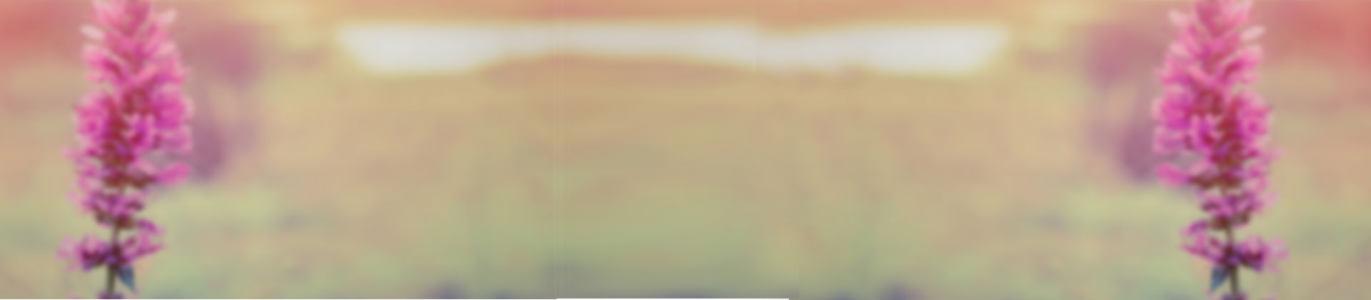 气质淘宝女包背景banner 唯美高清背景图片素材下载